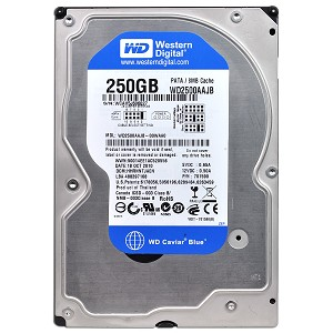 Western Digital BLUE Internal Desktop Hard Drive (250 GB)